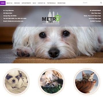 MetroVet